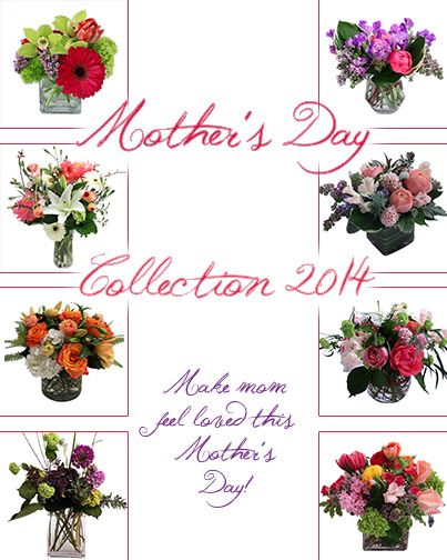 Mother's Day Collection Photo