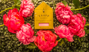 Trapp Candles Pure Peony